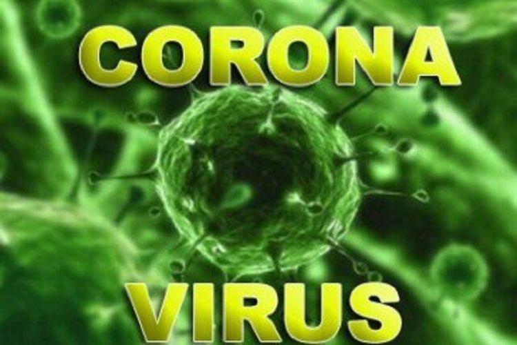 ویروس اسمش را نبر
